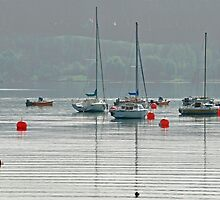 Boats On Carsington Water by Rod Johnson