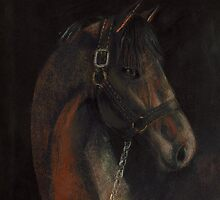 Bay Thoroughbred by arline wagner