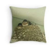 Baby Swallows in Mud Nest. Throw Pillow