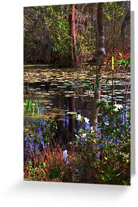 White Azaleas in the swamps of SC by Susanne Van Hulst