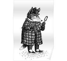 Fox -  Boy Poster