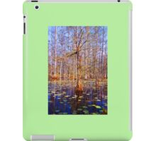 Swamp Scene  iPad Case/Skin