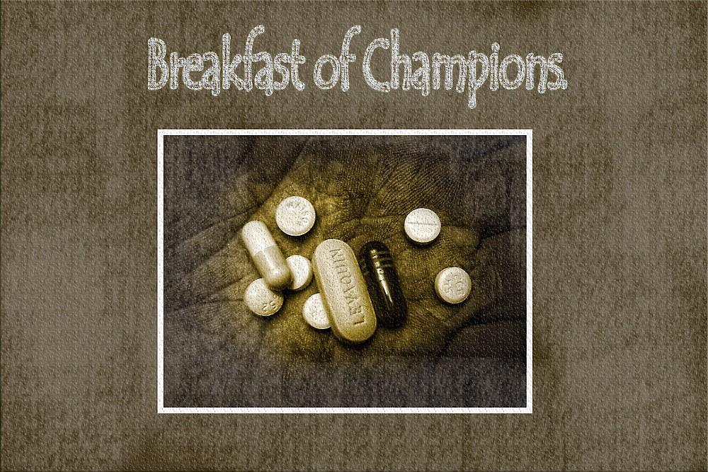 Breakfast of Champions by Gretchen  Mueller Steele