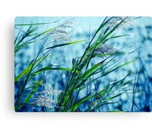 Blue Afternoon Canvas Print