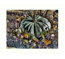 Autumn Gourd Art Print