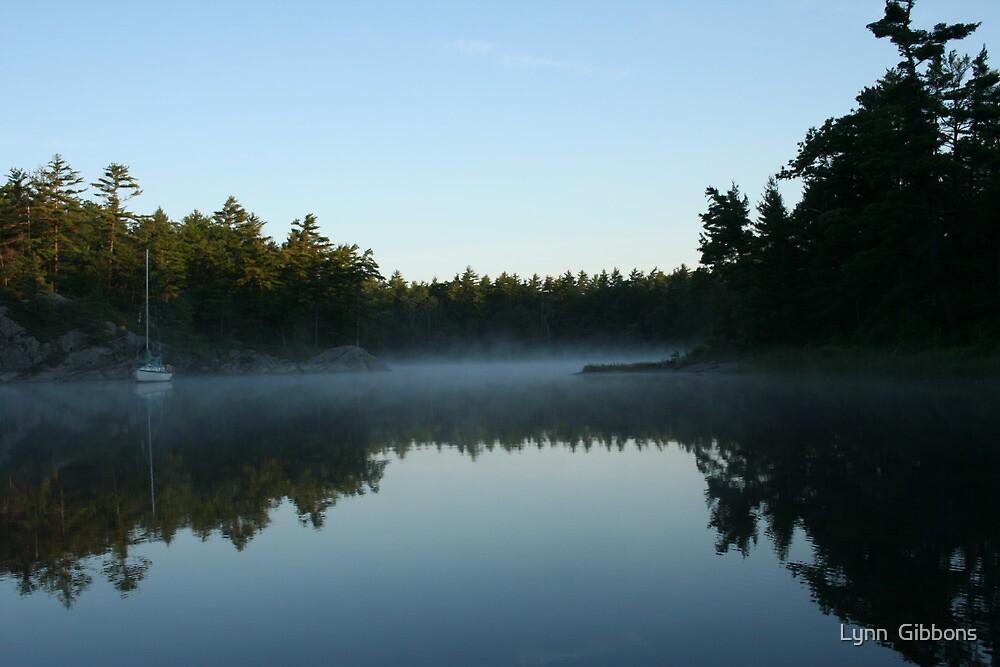 The Mist by Lynn  Gibbons