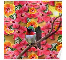 Hummingbird and Hibiscus Flowers Poster