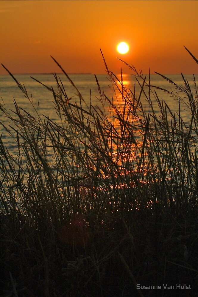 Setting Sun by Susanne Van Hulst