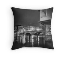 After the snow comes the flow Throw Pillow