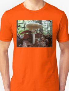 Tiny Toad 'Neath Parasol Mushroom Unisex T-Shirt
