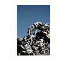 Driftwood, Alicante Art Print