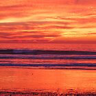 2010 New Year's Day at Carlsbad Beach by photojeanic