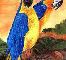 birds by Birgits