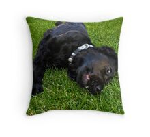 Black English Spaniel Throw Pillow