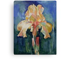 Dutch Iris Canvas Print
