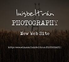 New Web Site by Luis Beltrán