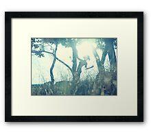 GEGENLICHT / BACK LIGHT II Framed Print