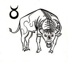 Taurus by nexus7