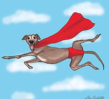 Adopt a Super Hero! by Lou Endicott