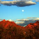 Arizona Moon by Susanne Van Hulst