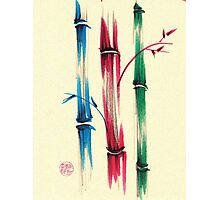 """Rainbow Bamboo Forest""  Watercolor Bamboo Painting Photographic Print"