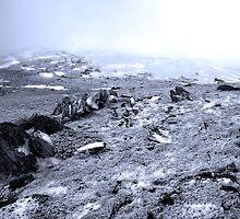 Snowscape by Kerryn Benbow