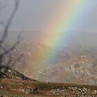 Rainbow over the loche on Skye by leannepapas