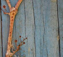 Creeping Vines on a Post by Kori Eryn