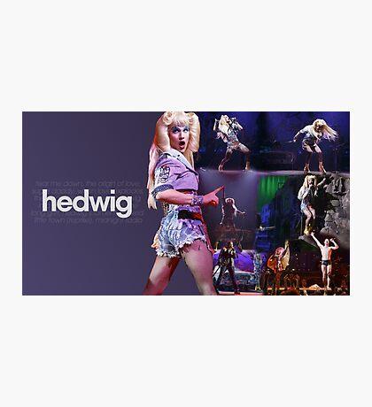 Darren Is Hedwig Photographic Print