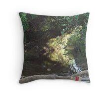 Mac Donalds  Creek Throw Pillow