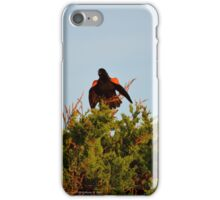 Agelaius Phoeniceus - Red-Winged Blackbird | Southampton, New York  iPhone Case/Skin