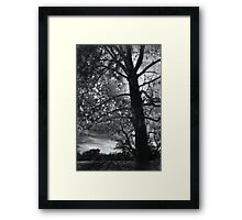 Monsters and Angels Framed Print
