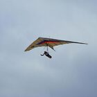 Hang Glider ~ La Jolla, California by John and Marie  Sharp