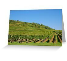 Alsace vineyards Greeting Card