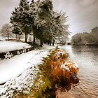 Liffey Snow by Gerry Chaney