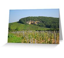 Alsace vineyard Greeting Card