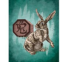 Chinese Zodiac - The Rabbit  Photographic Print