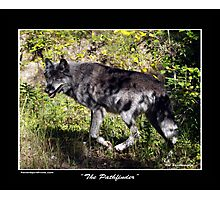 """""""The Pathfinder"""" Grey Wolf Photography Photographic Print"""