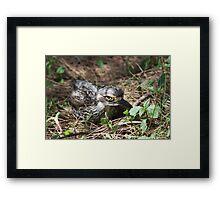 Camouflaged! Framed Print