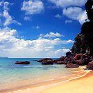 Onemana Beach, Coromandel by Paul Mercer