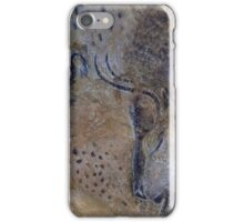 French Pyrenees Cave Paintings iPhone Case/Skin