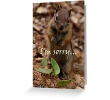 The Apology Greeting Card