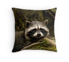 Ralphy Raccoon Throw Pillow
