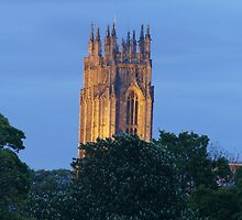 minster towers by nickhedges