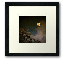 Florida Moon Framed Print