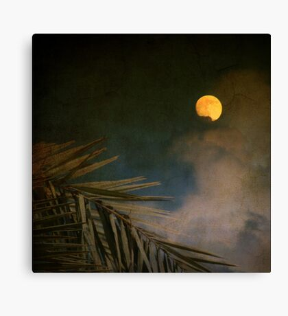 Florida Moon Canvas Print