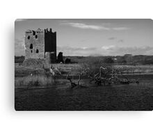 February in Scotland Canvas Print