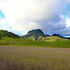Sutter Buttes by flyfish70