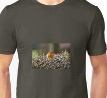 Posing Robin  Unisex T-Shirt