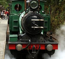West Coast Wilderness Railway Steam Train by Sprinkla